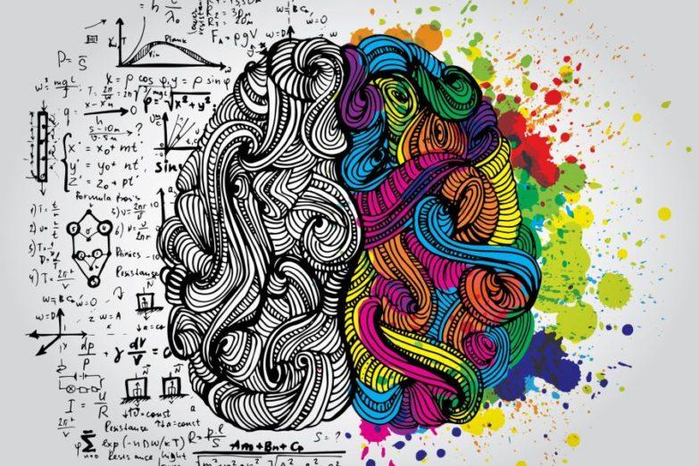 right-brain-left-brain-900-600-783x522.jpg